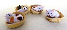 Miniatur Hund Katze im Korb Puppenstube Puppenhaus 3,5cm  4 zur Auswahl 1:12 Neu
