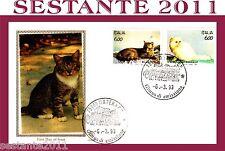 ITALIA FDC FILAGRANO GOLD I GATTI EUROPEO PERSIANO BIANCO 1993 CATS GATOS E71