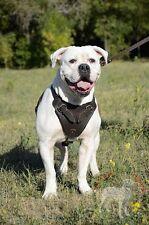 Pettorina per cane, in pelle naturale, per addestramento e lavoro di servizio