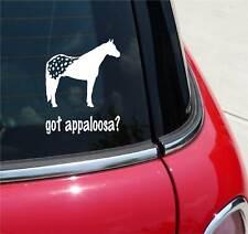 GOT APPALOOSA? APPALOOSA HORSE GRAPHIC DECAL STICKER ART CAR WALL DECOR