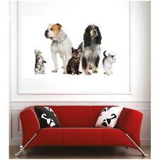 poster poster cani e gatti 30906940 Art déco Adesivi