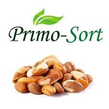 BRAZIL NUTS SELENIUM SOURCES PREMIUM QUALITY 100G-400G
