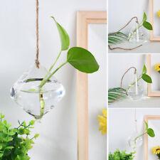 Pendant Boule Verre Vase Fleurs Cache-Pot Terrarium Récipient Fête Jardin Décors