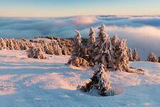 VLIES Fototapete-WINTERLANDSCHAFT-(3968V)-Schnee Natur Landschaft Bäume Nebel