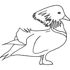 'Mandarin Duck' Rubber Stamp (RS019839)