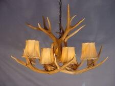 REAL ANTLER MULE DEER CHANDELIER, 6 Lights, SP6 Rustic Lighting, Cabin Lamps