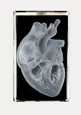 3D Laserkristall. Herz anatomisch-Sondergröße / Leuchtsockel. NEU. 2. Wahl