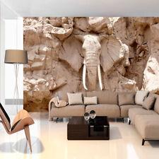 Fotomural de papel Tejido no tejido Murales ELEFANTE ROCA PARED g-B-0007-a-c