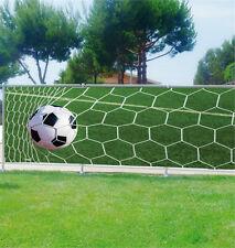 Brise vue déco personnalisé Ballon de foot réf 3694