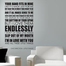 ONE Direction Wall Art Adesivo Little Things testi decal musica preventivo L33
