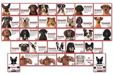 Warnschild Hinweis Schild Hundeschild Türschild 20x30 cm aus Alu Verbund Motive