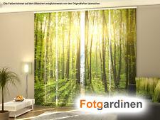 Fotogardinen Forest, Flächenvorhang, Schiebegardinen, m.Motiv Fotodruck, auf Maß