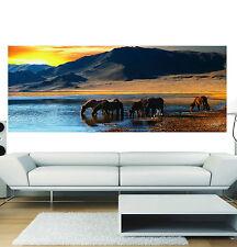 Adesivi scorcio panoramico decocrazione Cavalli ref 3629 ( 13 dimensioni )