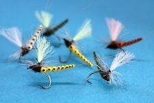 Maifliegen Extended Body Gr.14/12/10 Trockenfliege Qualität Fliegenfischen