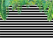 Thin Vinyl Backdrop Studio Background 10X8FT Black&White Stripes Tropical Leaves