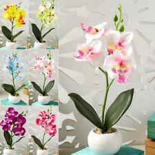 Accessories Artificial Flower Four Heads Plant Phalaenopsis Bonsai Display