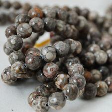 Jaspe piedras preciosas naturales grado un fósil redonda con cuentas - 4 mm 6 mm 8 mm 10 mm