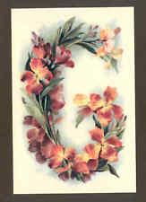 """G"" KLEIN FLOWER ALPHABET,REPRODUCTION POSTCARD"