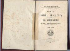 manuale di anatomia descrittiva comparata degli animali domestici -