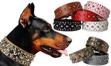 Hundehalsband Halsband Nietenhalsband breit Nieten Hunde Echtleder Leder cp01