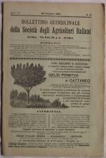 1904 BOLLETTINO QUINDICINALE AGRICOLTORI SICILIA OLIO