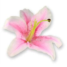 Haarspange Lilie Rockabilly Rock´n´Roll Lilly Kunstblüte Dekoblüte Blume ca.15cm