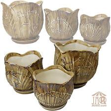 Maceta Maceta Tulipán pote de cerámica con Platillo en tres tallas Florero