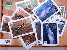 12 WWF - Sticker zum Aussuchen!!! MARKTKAUF EDEKA von 2012 :)