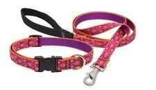 "Lupine Lifetime Guarantee Dog Collars & Leashes - 1/2"" - ALPEN GLOW"