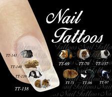 Nail Art Meerschweinchen Nagetiere Guinea pig langhaar kurzhaar TT-73 Tattoo