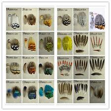 Wholesale 10-100pcs Beautiful pheasant feathers DIY Party Craft decora