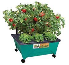 Raised Garden Bed, Patio Vegetable Herb Planter, Flower Watering System Box Kit