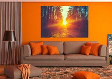 3D Herbst Wald Abendrot 754 Fototapeten Wandbild BildTapete Familie AJSTORE DE