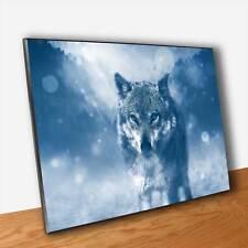 Poster Lupo nella Neve Stampa Fine Art Quadro Pannello MDF