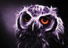 195958 OWL FRACTAL LIGHTART ART Wall Print Poster AU