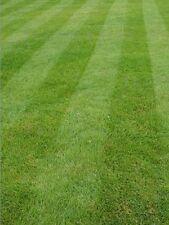 Lawn/Grass/Turf Conditioner & Fertiliser Zeolite Nutrients For Greener Lawns