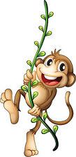 Adesivi bambino Scimmia liane ref 3544 Dimensioni de 10 cm da 130cm di altezza
