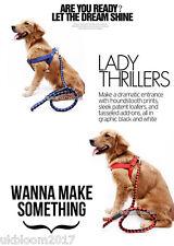 Mascota Perro Plomo correas de nailon resistente y cuerda formación Slip Correa De Cuello Husky Labrador