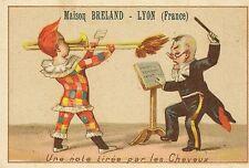 CHROMO MAISON BRELAND PRODUITS PHARMACIE LYON UNE NOTE TIREE PAR LES CHEVEUX