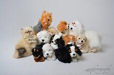 BNIB Beautiful Bocchetta Plush Dog or Cat Toy, Labrador, Spaniel, Terrier Teddy