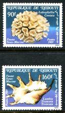 Djibouti 642-643, MNH, Marine Life Lobophillia costata lambis truncata. x8314