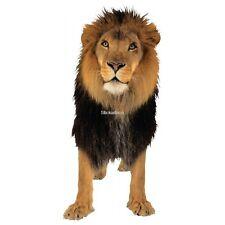 Sticker Lion 2 lion 2