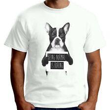Velocitee Mens T-Shirt Being Normal Is Boring Slogan French Bulldog A21612