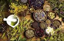 57 Kind, Fresh Natural Herbs Herb Plant Herbal Remedies / 50 100 200 300 g