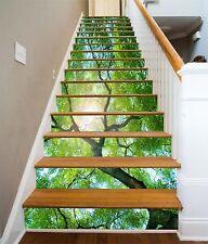3D Tree Sunlight 4 Stair Risers Decoration Photo Mural Vinyl Decal Wallpaper CA