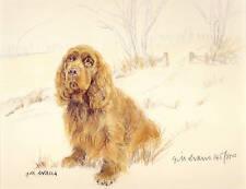 SUSSEX SPANIEL DOG FINE ART LIMITED EDITION PRINT