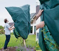 XXL großes Wintervlies Winterschutz Frostschutz für große Pflanzen Palme Palmen