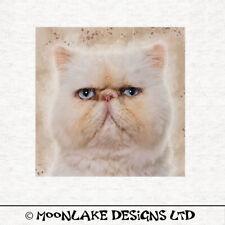 Persian, Grumpy Cat, Splatter, Fabric Quilting    Sewing   Craft Panel
