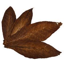 Kentucky Blätter Rohtabak Blätter Dark Fired Naturtabak Tabakblätter Tobacco