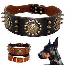 Genuine Leather Studded Dog Collar Adjustable for Large Breeds Bulldog Boxer XL